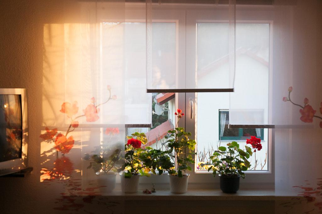 Ausblick Wohnzimmer
